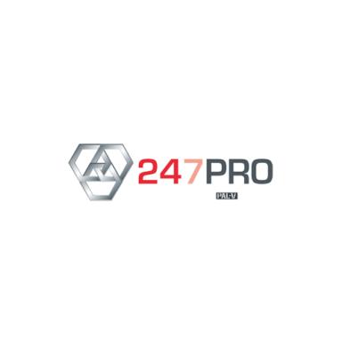 Pal V 247Pro