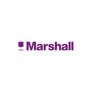Pal V Marshall