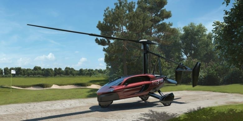 Pal V Flying Car The Fastest Way To Become A Pilot